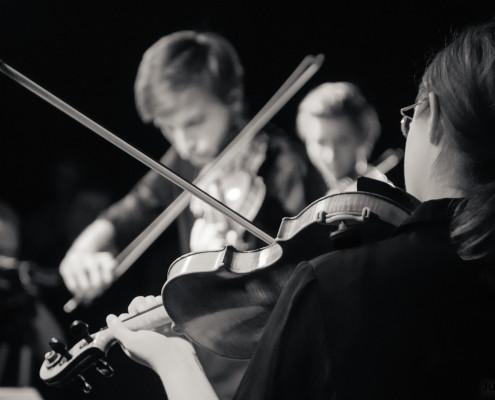 20140621 Specialni Godalkarski Orkester foto Jure Matoz 006
