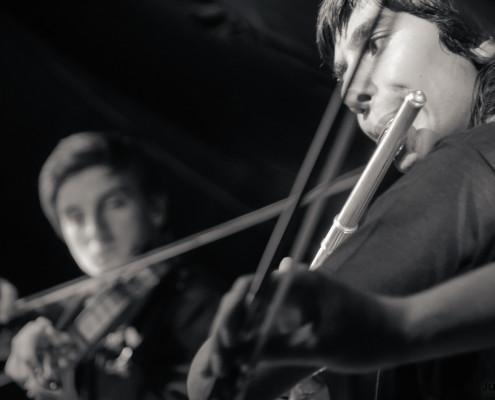 20140621 Specialni Godalkarski Orkester foto Jure Matoz 020